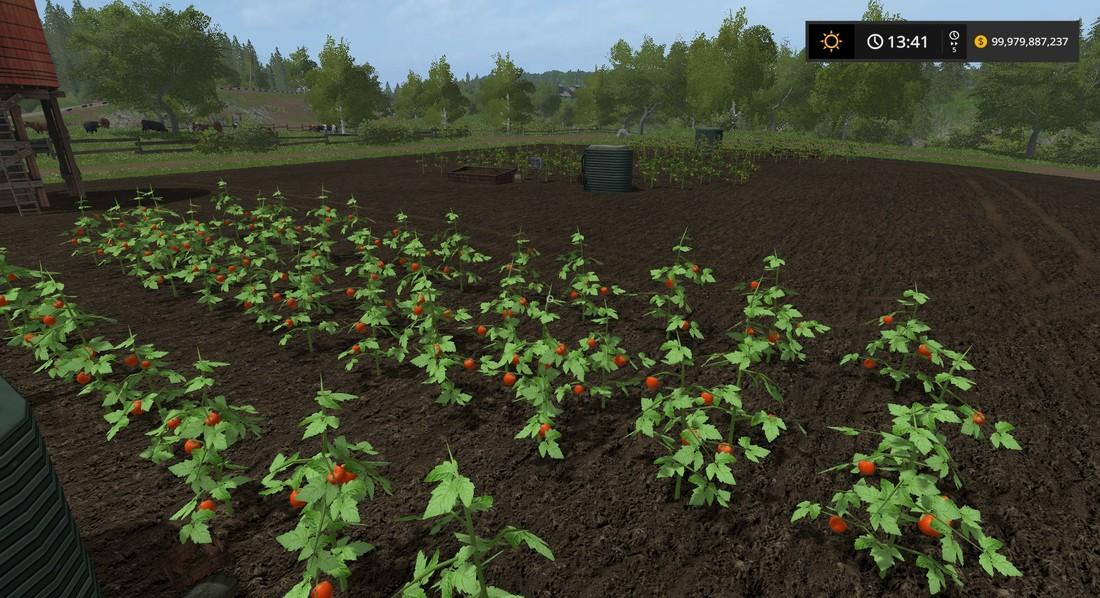 Мод PLACEABLE TOMATO FIELD V1.0 Farming Simulator 2017